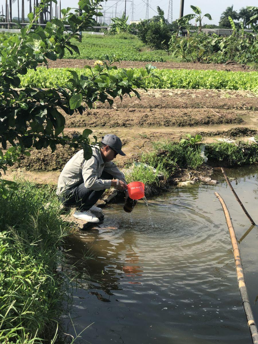 Lấy mẫu tại làng rau Minh Khai